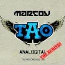 Marco V - Analogital (Hard Rock Sofa Remix)