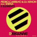 Pedro Carrilho & DJ Xenon feat. Shena - 5 Elements (DJ Mause Remix)