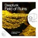 Deepfunk - Fields Of Ruins (Original Mix)
