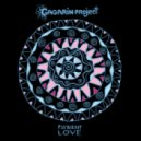 Gagarin Project - Psybient Love
