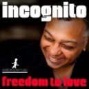 Incognito - Freedom To Love