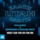 Drumsound & Bassline Smith vs Utah Saints - What Can You Do For Me