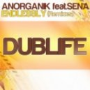 Anorganik Ft. Sena - Endlessly (Soulstream Remix)
