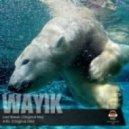 Wayik - Last Break