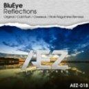 Blueye - reflections