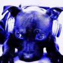 Madsound -  NuDeep Summer Mix