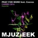Pray For More, Ceevox  -  Carino 2014  (Pray For More Remix)