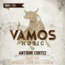 Antoine Cortez - Fallin' Star (Jeremy Bass, Branchie Remix)