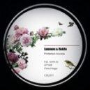 Lumoon & Rob!n - Printemps Nouveau (Original Mix)