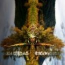 Psyentifica - Singularity (Original mix)
