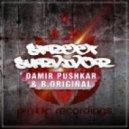 Damir Pushkar, B.Original - Street Survivor (Original Mix)