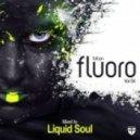 Liquid Soul - Full On Fluoro, Vol. 4 (Full Continuous Mix)