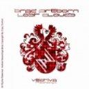 Brad Fireborn - Lost Clouds (Original mix)