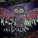 Has! - Akadicus (Funsky Remix)