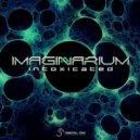 Imaginarium - Insider (Original Mix)