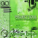 Project Soul - Mellow Dream (Original Mix)