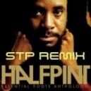 Half Pint - Too Rude (Dj STP Remix)
