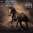 Sergio Fernandez - Oval Room (Original Mix)