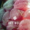 Kry Wolf - Education (Original Mix)