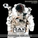 Shakedown - At Night (Dan Domino Future Reload)