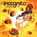 Incognito - Don't Wanna Know (Original Mix)