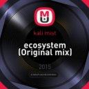 kali mist - ecosystem (Original mix)