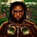 Jah Cure - Never Find (Interface Remix)