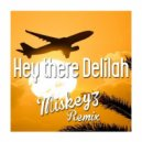 Plain White T's  -  Hey There Delilah  (Miskeyz Remix)