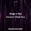 Dogs x Fox - Classical