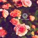 Slom. - Petals (Original mix)