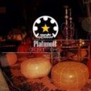 Platunoff - Arabian Night S (Napalm & D-Phrag Remix)
