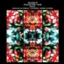 Adam-P - Pleasure Trip (Nissim Gavriel Remix)