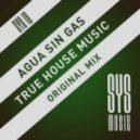 Agua Sin Gas - True House Music (Original Mix)