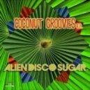 Alien Disco Sugar - Coconut Groove (Original Mix)