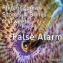 Philani Zuma, Stones & Bones feat. Tweety - False Alarm (Original Mix)