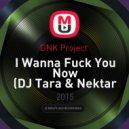 DNK Project  - I Wanna Fuck You Now (DJ Tara & Nektar Remix)