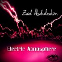 Zaid Abdulrahim - Organized Confusion
