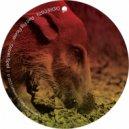 Red Pig Flower - Secret Spell  (Original Mix)
