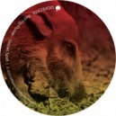 Red Pig Flower & Artur Nikolaev - Secret Spell (Artur Nikolaev Remix)