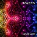 Toxeed - Underground (Original mix)