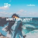 Tim Gartz Ft. Nicole Gartz - What You Want (Original Mix)
