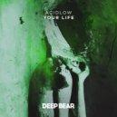 Acidlow - Your Life