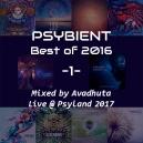 Avadhuta - Psybient: Best of 2016, Vol.1 (Live @ Psyland 2017)