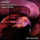 Doctor Silva & DJ HK & Fagner - Gavião (Fagner Remix)