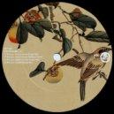 Nico Cano - Paseo En Lucerna (Matthieu B Remix)