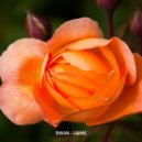 SWAN - U&ME (Original Mix) ()