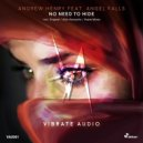Andrew Henry feat. Angel Falls - No Need To Hide