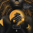 Wayves feat. Hamid Reza Dadoo - Through the Mystery Forest   (Original Mix) ()