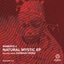 Roberto C & Damian Heinz - Natural Msitic