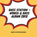 Bass Station - World & Bass (Original Mix)